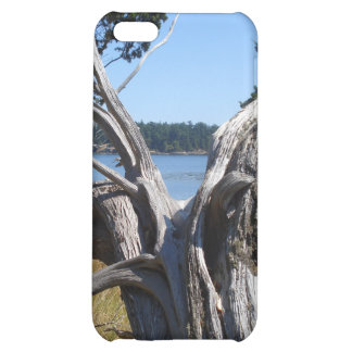 Ocean View by Uncle Junk iPhone 5C Cases