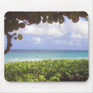 Ocean View, Juno Beach Mouse Pad