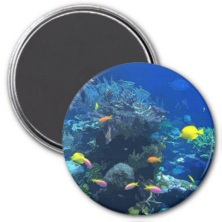 Ocean View with Colorful Fish & Coral Photo Magnet