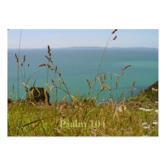 Ocean Vista - Psalm 104 Tract Cards /