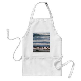 Ocean Water Beaches Birds Waves Sand Sunset Aprons