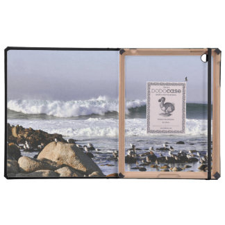 Ocean Waves in Monterey Bay Cover For iPad