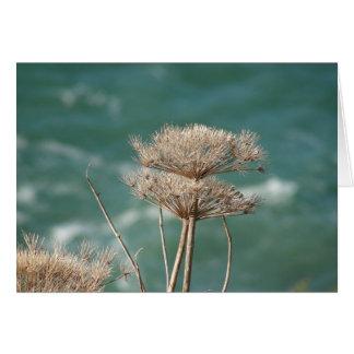 Ocean weeds greeting card