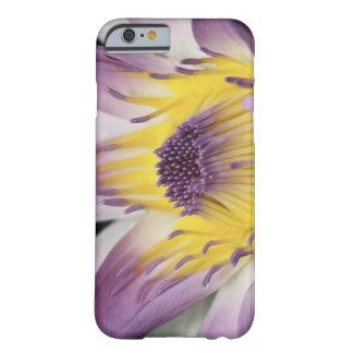 Oceanía, Fiji, Panamá púrpura Pacifica Nymphea Funda Para iPhone 6 Barely There