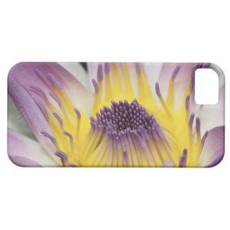Oceanía, Fiji, Panamá púrpura Pacifica Nymphea iPhone 5 Funda
