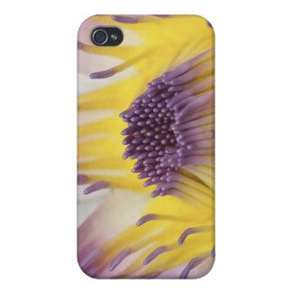 Oceanía, Fiji, Panamá púrpura Pacifica Nymphea iPhone 4 Carcasa