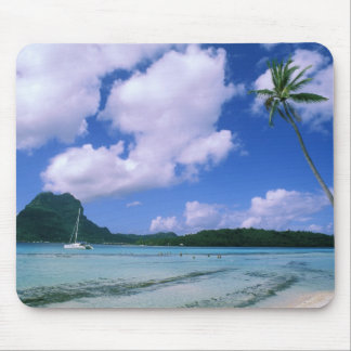 Oceania, French Polynesia, Tahiti. View of Mouse Pads
