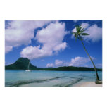 Oceania, French Polynesia, Tahiti. View of Posters