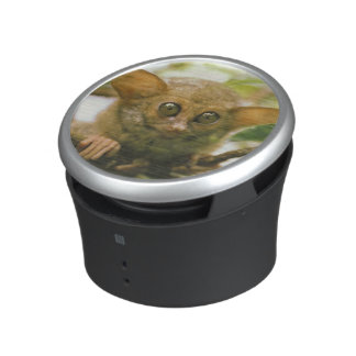 Oceania, Indonesia, Sulawesi. Tarsier tarsius Bluetooth Speaker