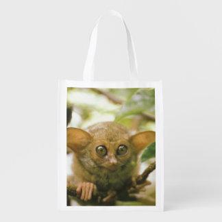 Oceania, Indonesia, Sulawesi. Tarsier tarsius Reusable Grocery Bag