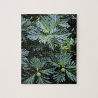 Oceania, South Pacific, French Polynesia, Jigsaw Puzzle