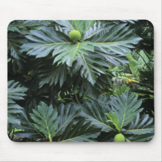 Oceania, South Pacific, French Polynesia, Mousepad