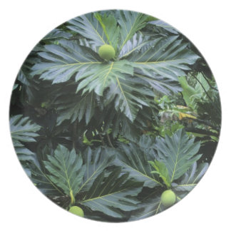 Oceania, South Pacific, French Polynesia, Party Plate
