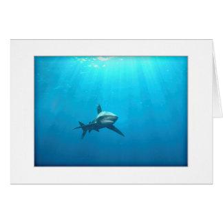 Oceanic Whitetip Shark Greeting Card