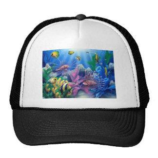 oceanlife 1.jpg hats