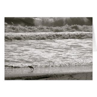 Océano Atlántico Tarjeta Pequeña