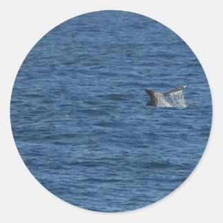 Océano de las colas de las ballenas pegatina