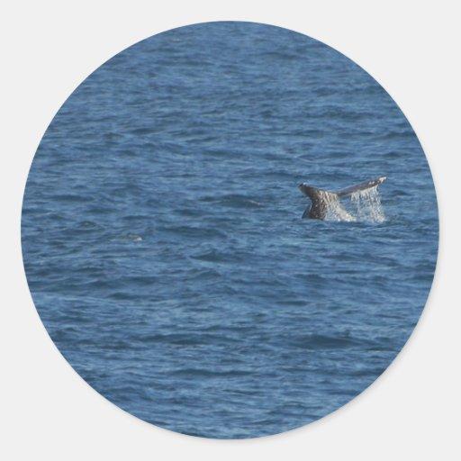 Océano de las colas de las ballenas pegatina redonda