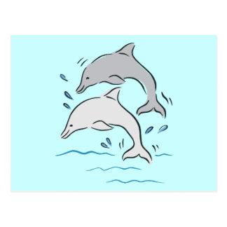 Océano de los mamíferos marinos de los delfínes de postal