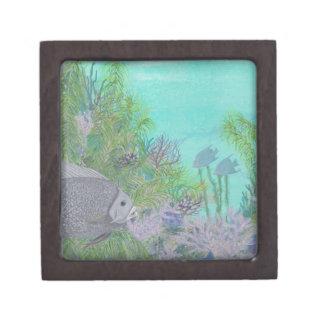 Océano gris del azul del Angelfish Caja De Regalo De Calidad