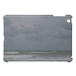 Océano tempestuoso con volar de los pájaros