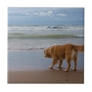 Océano tocante del perro perdiguero del pato de Nu Teja Ceramica