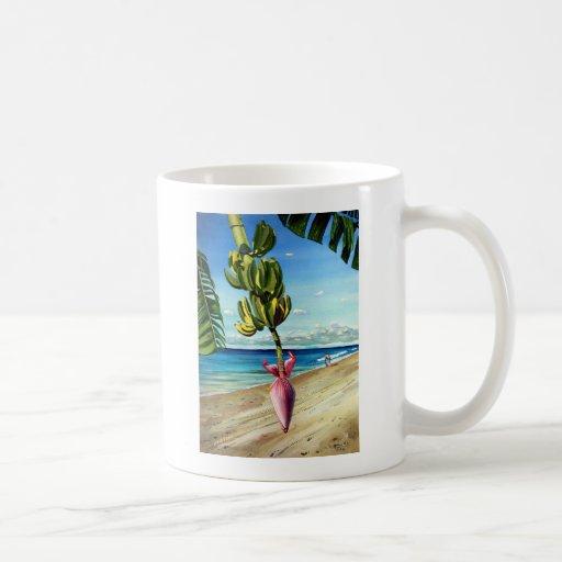 Océano tropical con el árbol de plátano taza