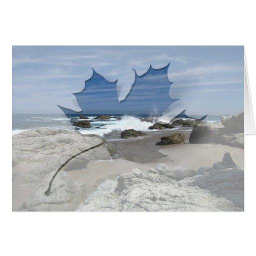 Océano vivo tarjetas