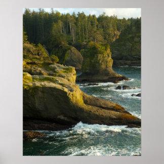Océano y orilla rocosa de la área remota póster