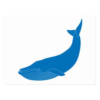 Océanos de la fauna de los mamíferos marinos de la postal