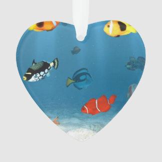 Océanos de pescados