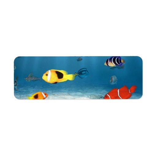 Océanos de pescados etiqueta de remite