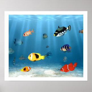 Océanos de pescados poster