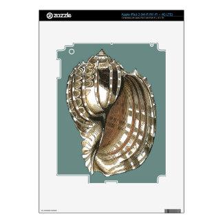 Ocean's Jewel Skins For iPad 3