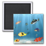 Oceans Of Fish 2 Inch Square Magnet