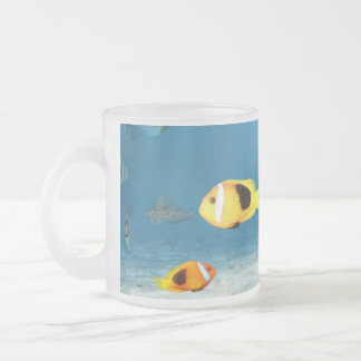Oceans Of Fish Frosted Glass Coffee Mug