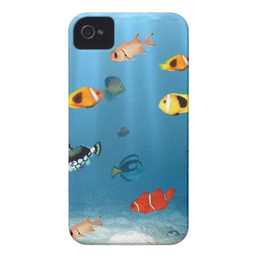 Oceans Of Fish iPhone 4 Case