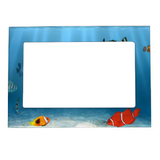 Oceans Of Fish Magnetic Picture Frame