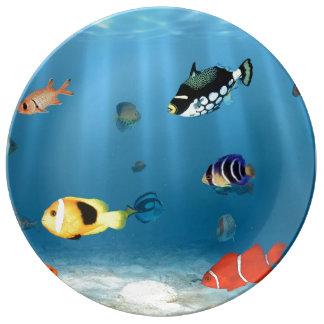 Oceans Of Fish Porcelain Plates