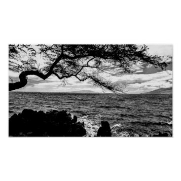 Hawaiian Themed Oceanside Tree in Hawaii Black and White Poster