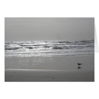 Oceanview Greeting Card
