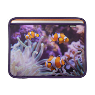 Ocellaris Clownfish | Amphiprion Ocellaris MacBook Air Sleeve