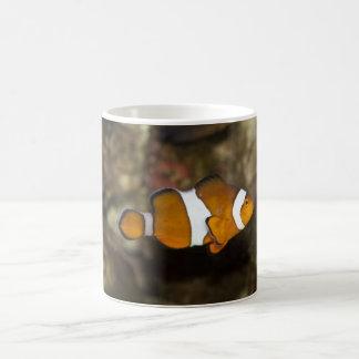 Ocellaris Clownfish Classic White Coffee Mug