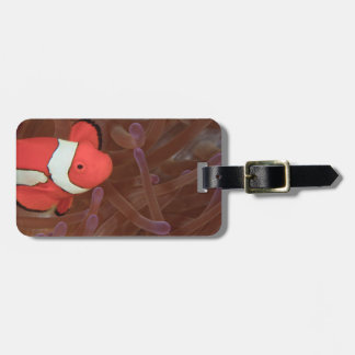 Ocellated Anemonefish Amphiprion ocellaris) Bag Tag