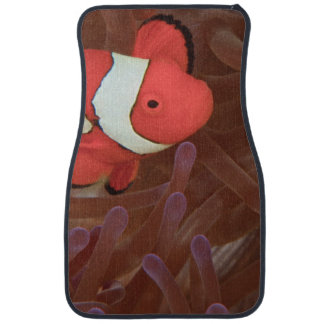 Ocellated Anemonefish Amphiprion ocellaris) Car Floor Mat