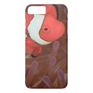 Ocellated Anemonefish Amphiprion ocellaris) iPhone 7 Plus Case