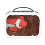 Ocellated Anemonefish Amphiprion ocellaris) Yubo Lunchbox