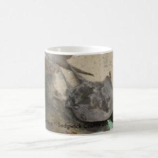 Ocellated River Rays Coffee Mug