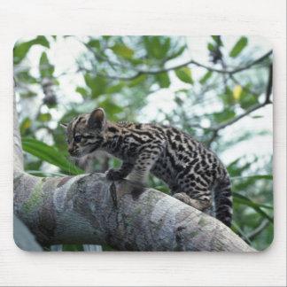 Ocelot-baby climbing tree mouse pad