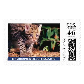 Ocelot, EnvironmentalDefense.org - Customized Postage Stamp